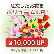 お花を増量ボリュームアップ【プラス10,000円】