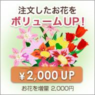 お花を増量ボリュームアップ【プラス2,000円】