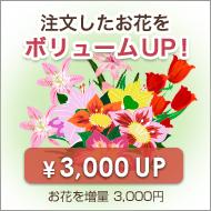 お花を増量ボリュームアップ【プラス3,000円】