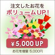 お花を増量ボリュームアップ【プラス5,000円】